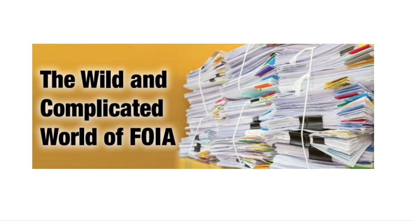 "Regional Center Business Journal Sneak Peek: ""The Wild and Complicated World of FOIA"""