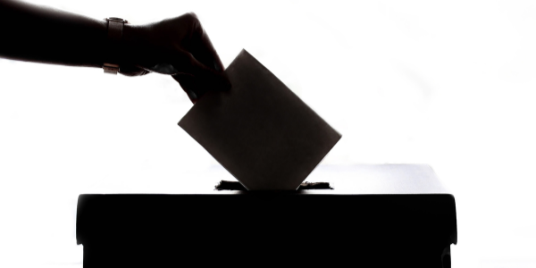 Last Chance to Submit Your Votes for the IIUSA Annual Election